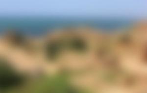 Expresssendungen nach Algerien