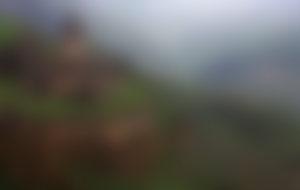 Preiswerte Sendungen nach Armenien
