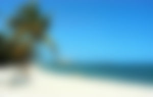 Expresssendungen nach Kuba