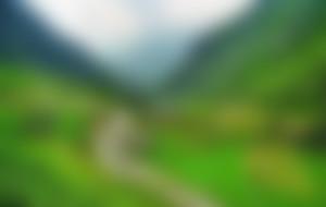 Expresssendungen nach Pakistan