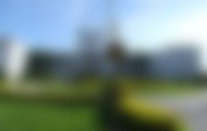 Preiswerte Sendungen nach Paraguay