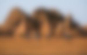 Preiswerte Sendungen in den Sudan
