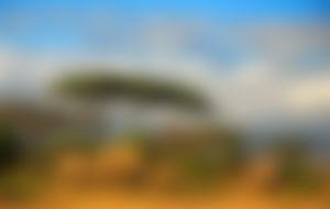 Preiswerte Sendungen nach Tansania