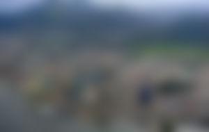 Preiswerte Sendungen nach Trinidad und Tobago